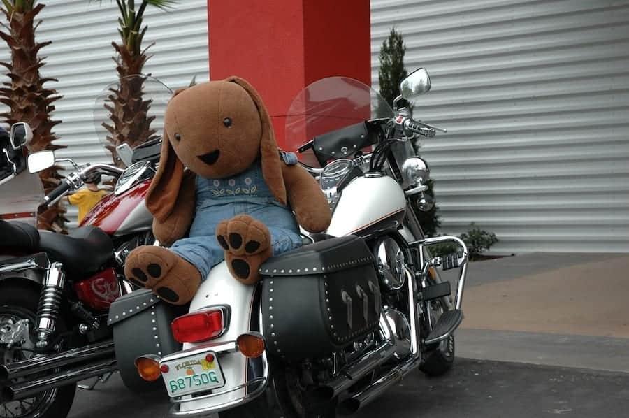 Large stuffed animal on motorcycle during Bike Week