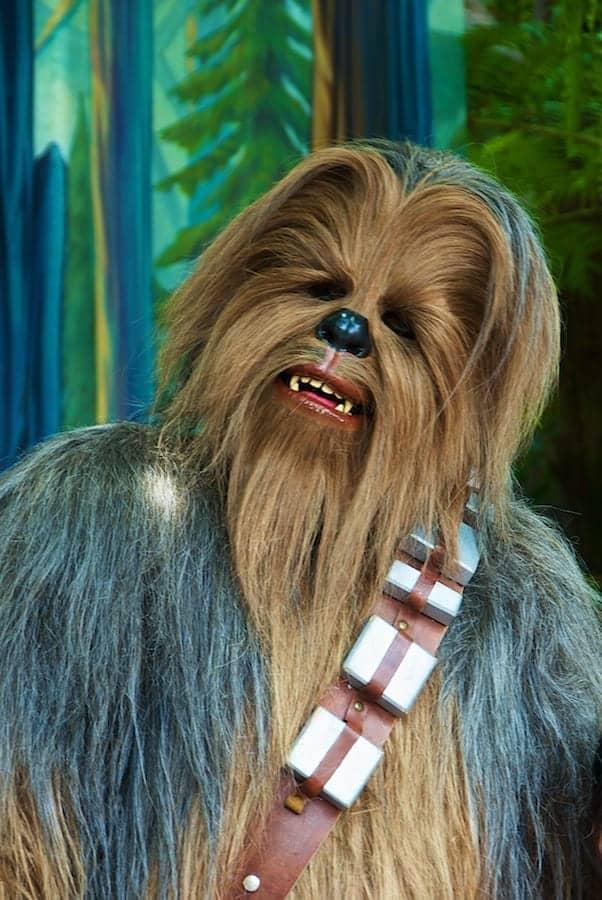 Chewbacca - Star Wars Wookie