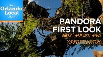 OL 043: Pandora First Look – Hits, Misses and Opportunities