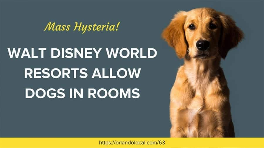Walt Disney World Resorts Allow Dogs in Rooms